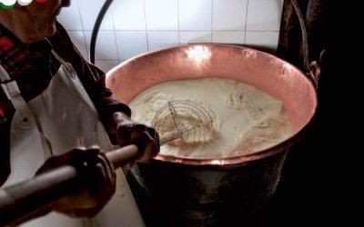Saiba como se faz o queijo Asiago – vídeo