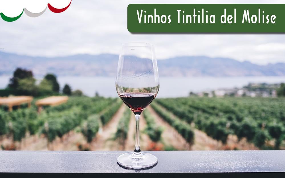 Vinhos Tintilia del Molise – DOC